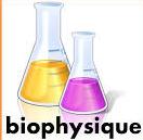 Module Biophysique